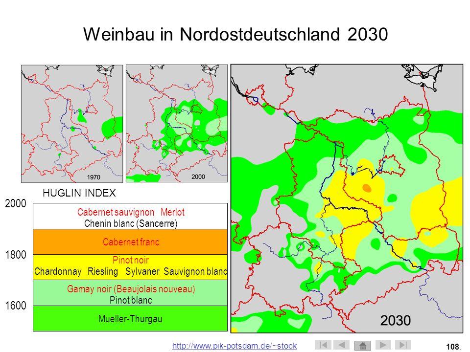 Weinbau in Nordostdeutschland 2030