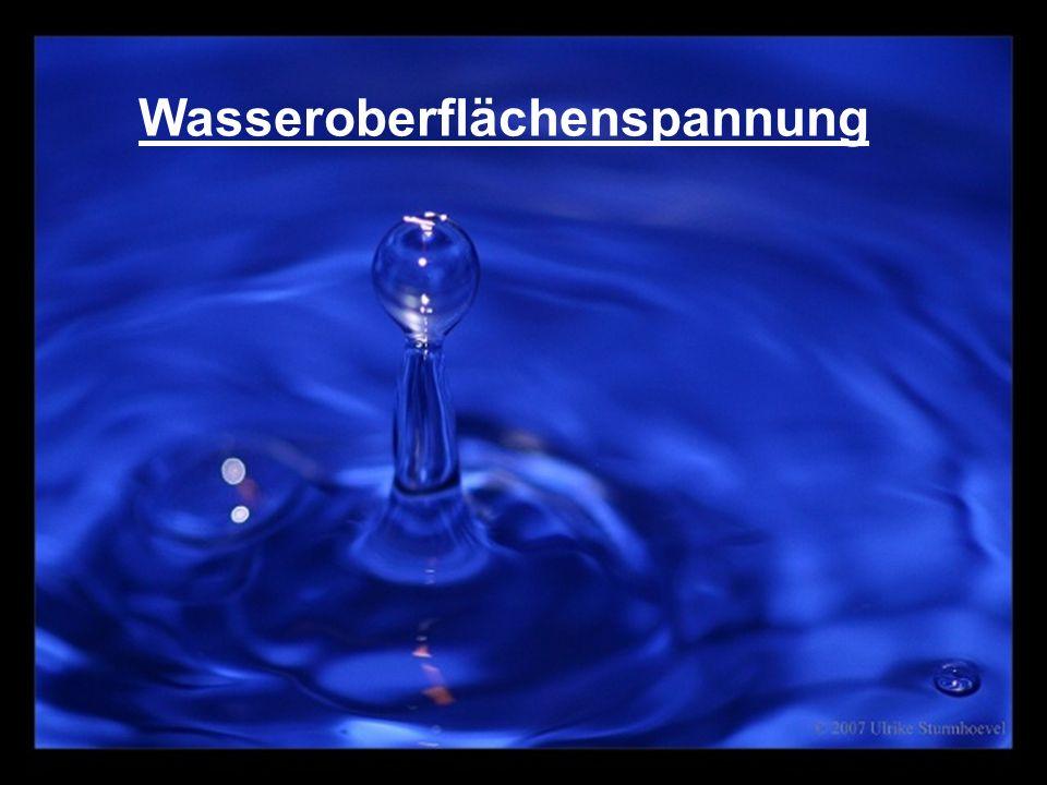 Wasseroberflächenspannung