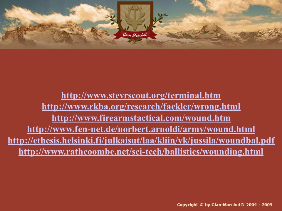 http://www. steyrscout. org/terminal. htm http://www. rkba
