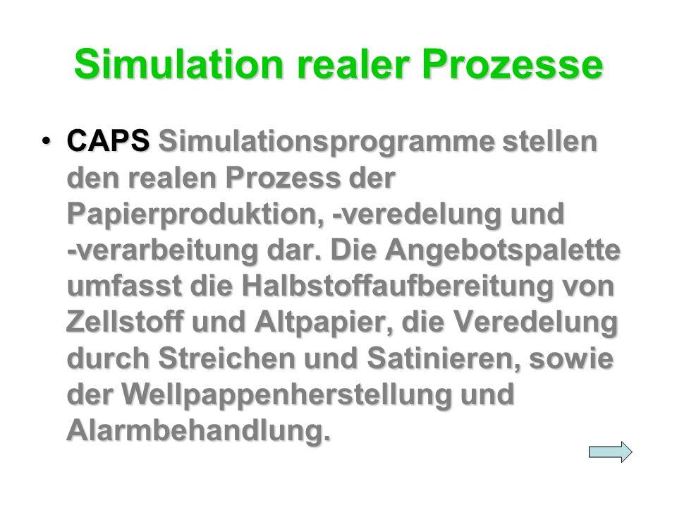 Simulation realer Prozesse
