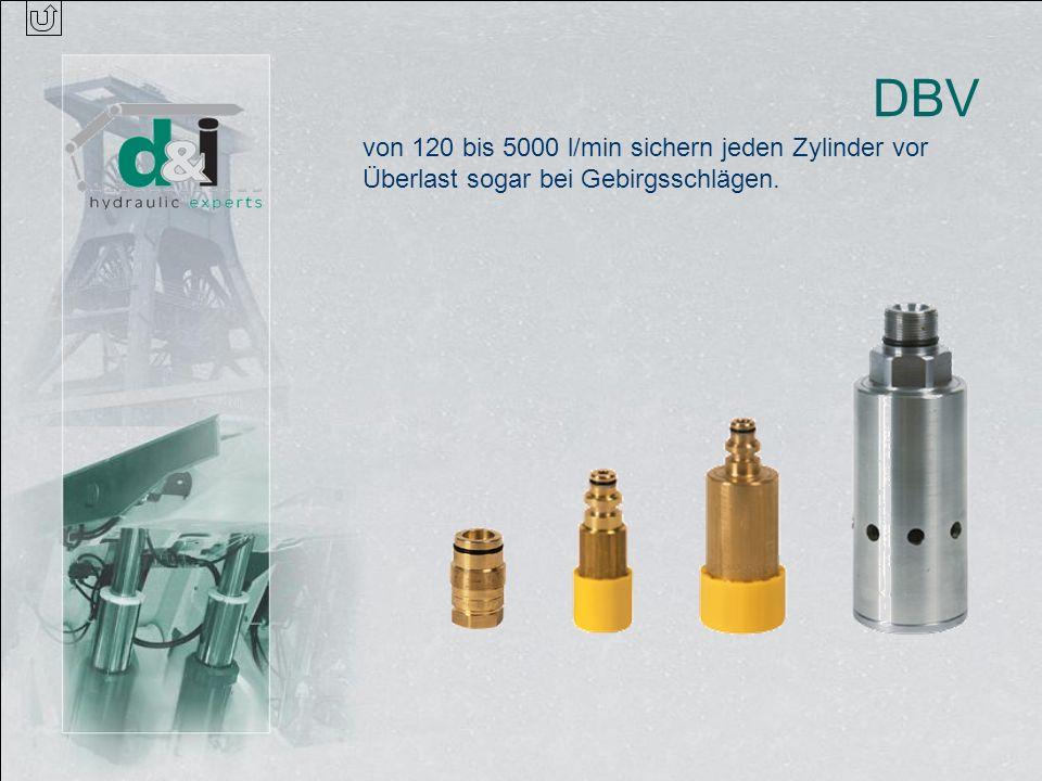 DBV von 120 bis 5000 l/min sichern jeden Zylinder vor Überlast sogar bei Gebirgsschlägen.