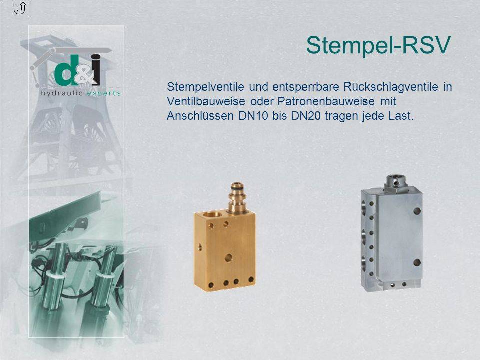 Stempel-RSVStempelventile und entsperrbare Rückschlagventile in Ventilbauweise oder Patronenbauweise mit Anschlüssen DN10 bis DN20 tragen jede Last.