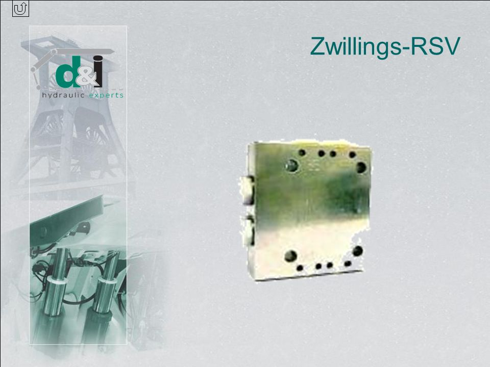 Zwillings-RSV