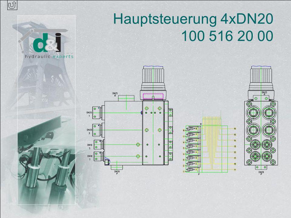 Hauptsteuerung 4xDN20 100 516 20 00