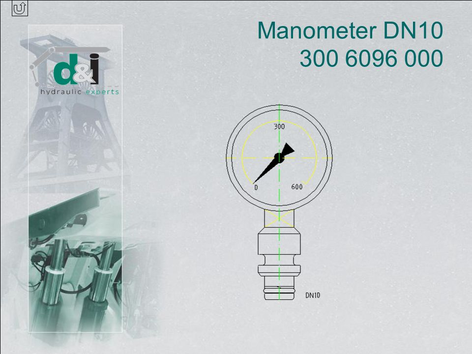 Manometer DN10 300 6096 000