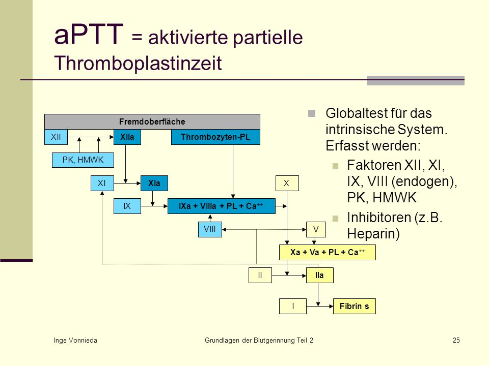 aPTT = aktivierte partielle Thromboplastinzeit
