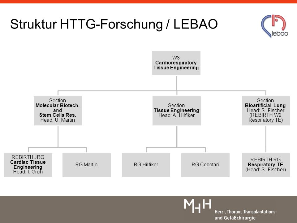Struktur HTTG-Forschung / LEBAO