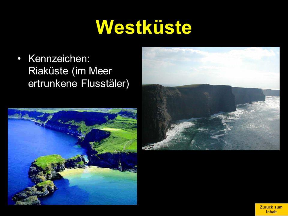 Westküste Kennzeichen: Riaküste (im Meer ertrunkene Flusstäler)
