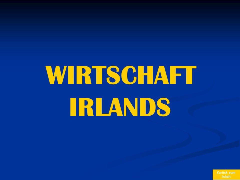 WIRTSCHAFT IRLANDS