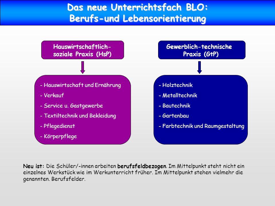 Das neue Unterrichtsfach BLO: Berufs-und Lebensorientierung