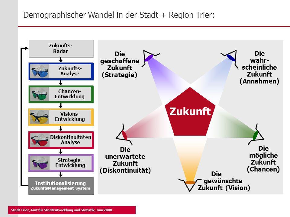 Institutionalisierung ZukunftsManagement-System
