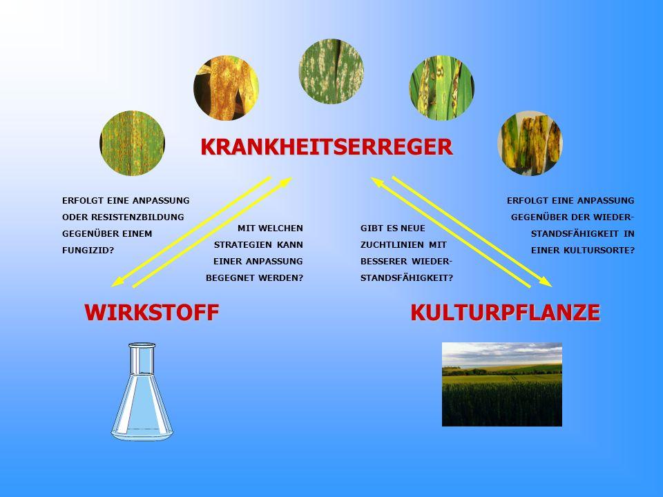 KRANKHEITSERREGER WIRKSTOFF KULTURPFLANZE