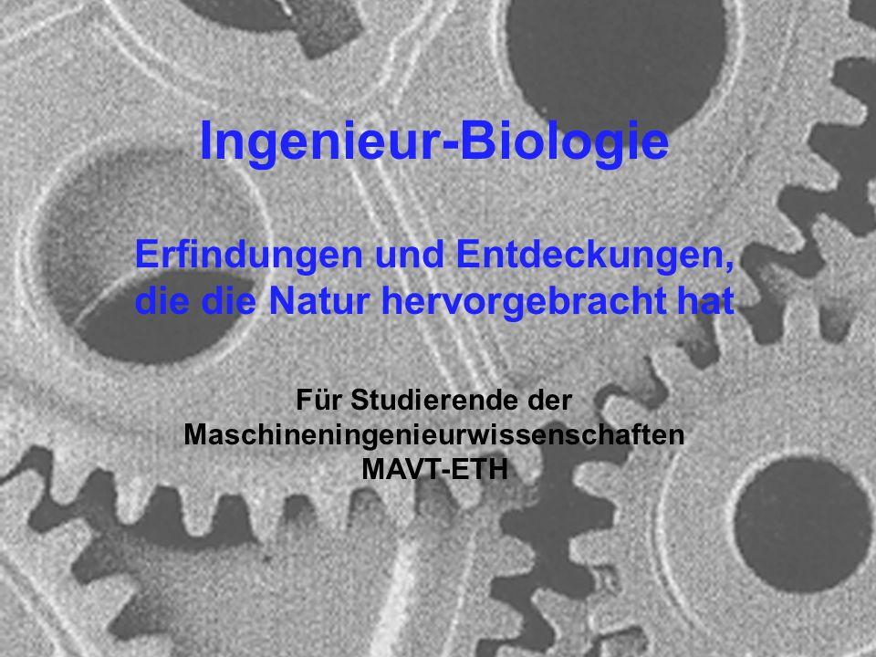 Ingenieur-Biologie Erfindungen und Entdeckungen, die die Natur hervorgebracht hat. Für Studierende der Maschineningenieurwissenschaften.