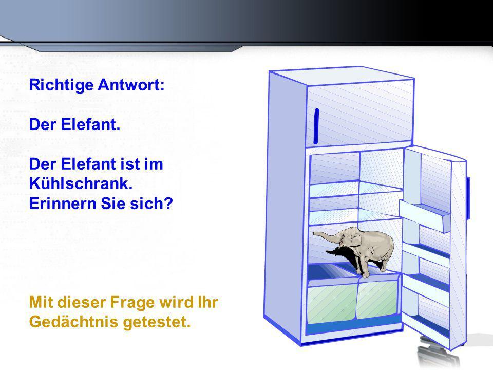 Richtige Antwort: Der Elefant. Der Elefant ist im Kühlschrank.
