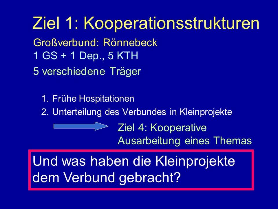 Ziel 1: Kooperationsstrukturen