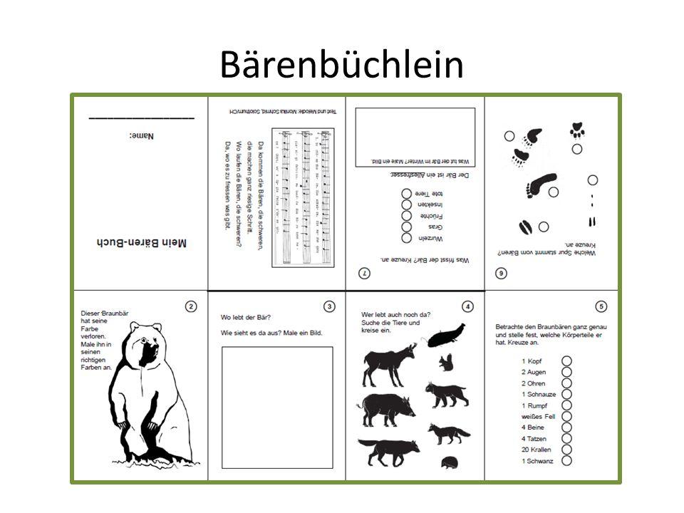Bärenbüchlein