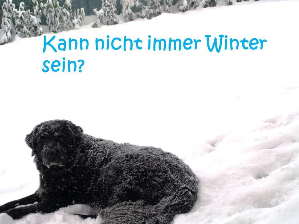Kann nicht immer Winter sein