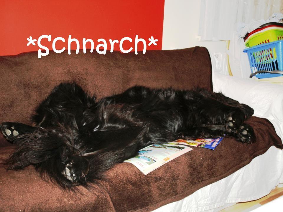 *Schnarch*