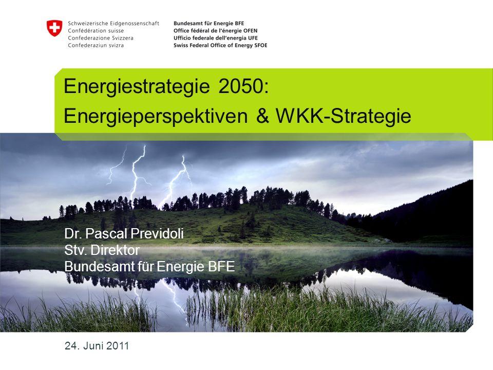 Energieperspektiven & WKK-Strategie