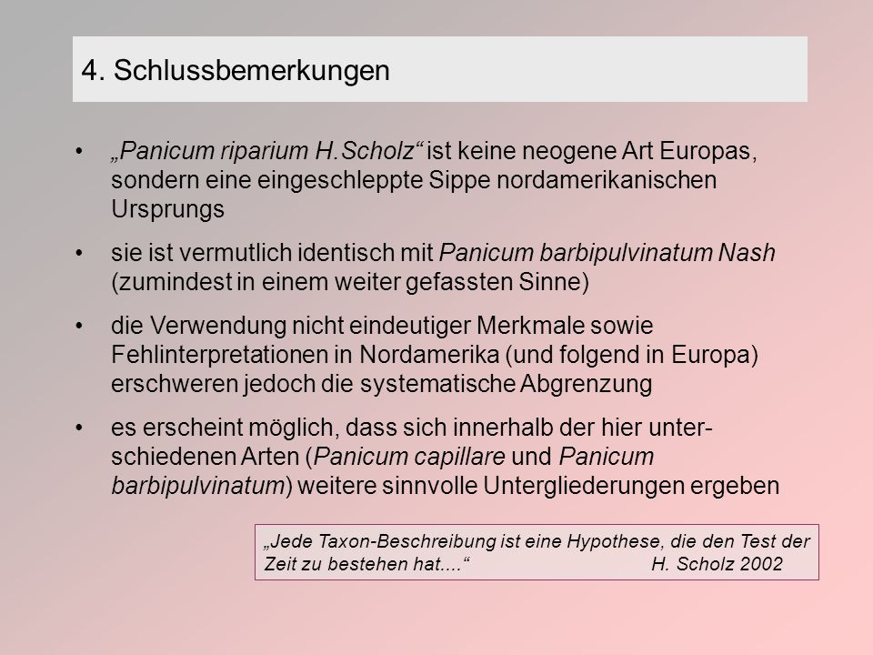 """4. Schlussbemerkungen """"Panicum riparium H.Scholz ist keine neogene Art Europas, sondern eine eingeschleppte Sippe nordamerikanischen Ursprungs."""