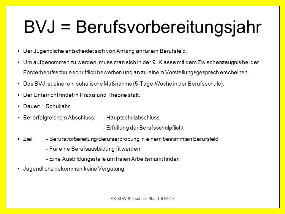 BVJ = Berufsvorbereitungsjahr