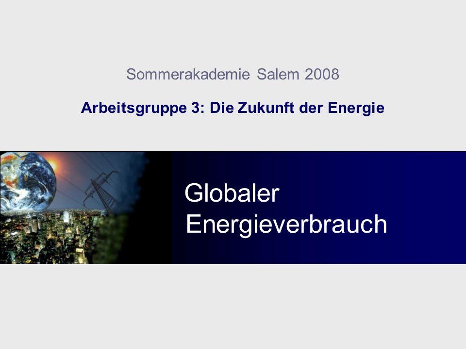 Arbeitsgruppe 3: Die Zukunft der Energie