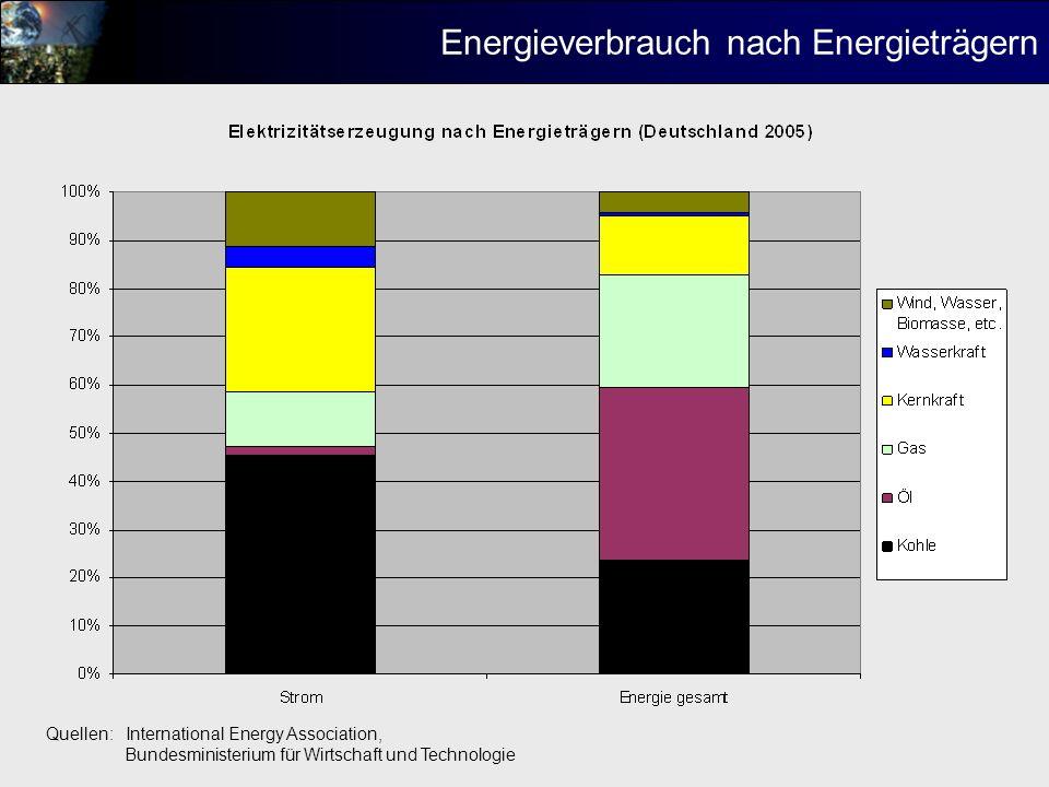 Energieverbrauch nach Energieträgern