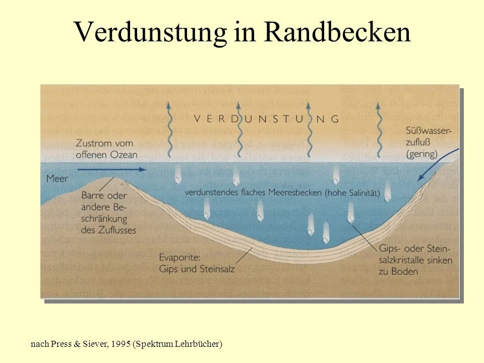 Verdunstung in Randbecken