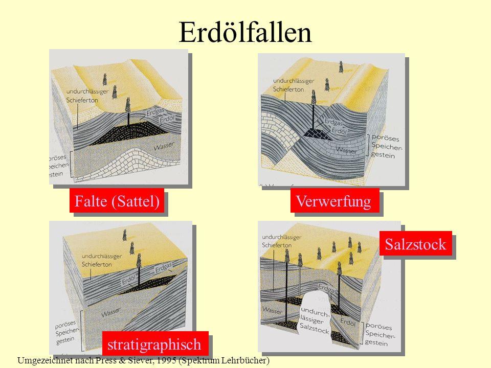 Erdölfallen Falte (Sattel) Verwerfung stratigraphisch Salzstock