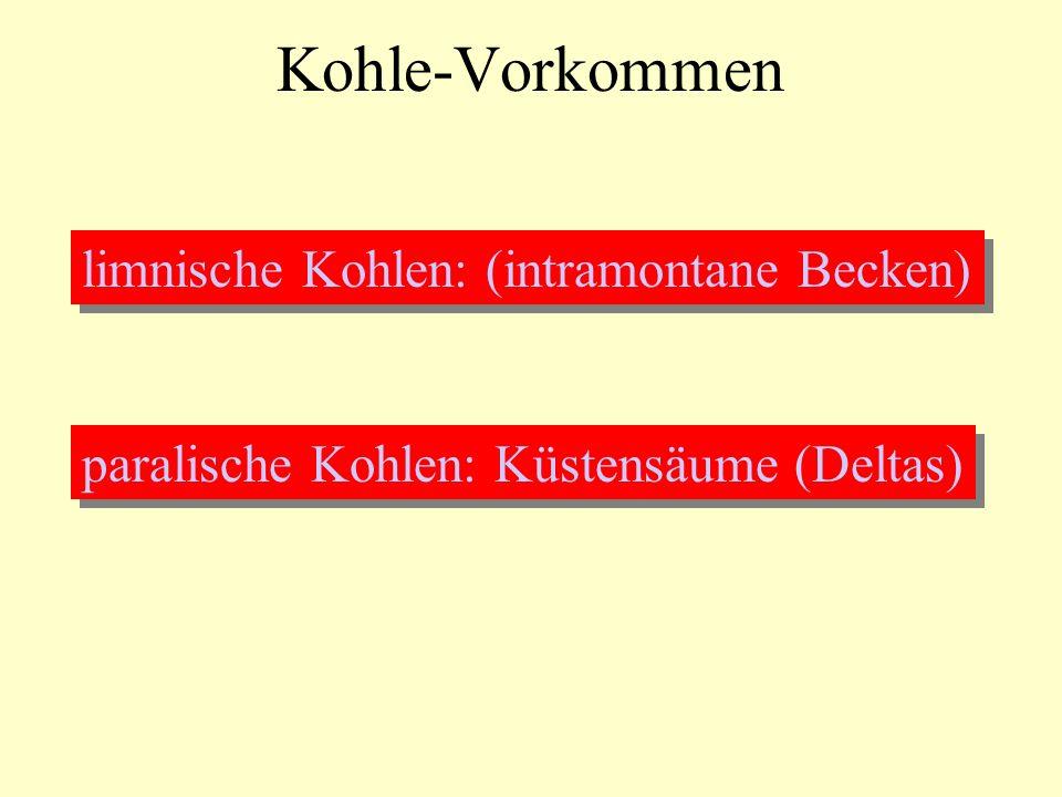 Kohle-Vorkommen limnische Kohlen: (intramontane Becken)
