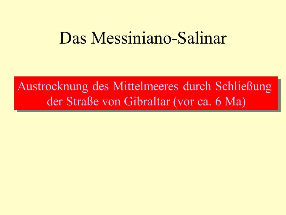 Das Messiniano-Salinar