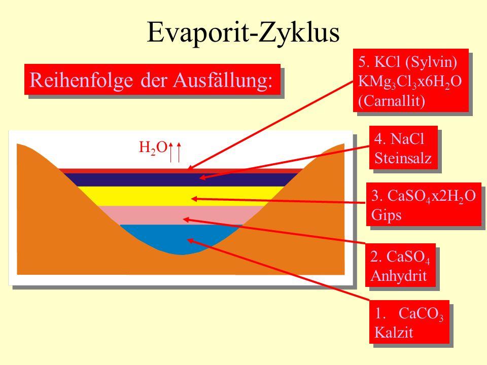 Evaporit-Zyklus Reihenfolge der Ausfällung: 5. KCl (Sylvin)