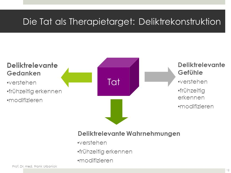 Die Tat als Therapietarget: Deliktrekonstruktion