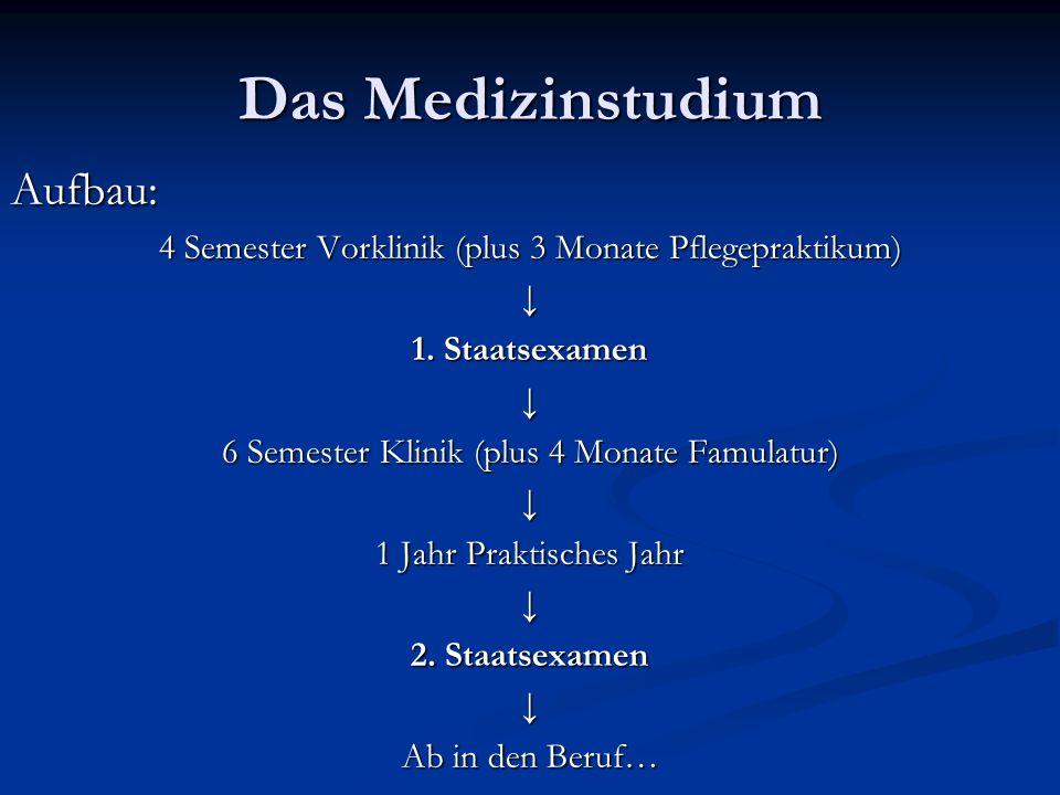 Das Medizinstudium Aufbau: