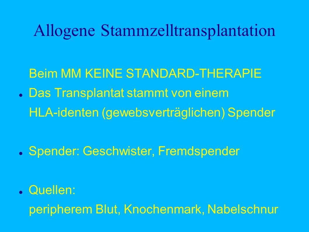 Allogene Stammzelltransplantation