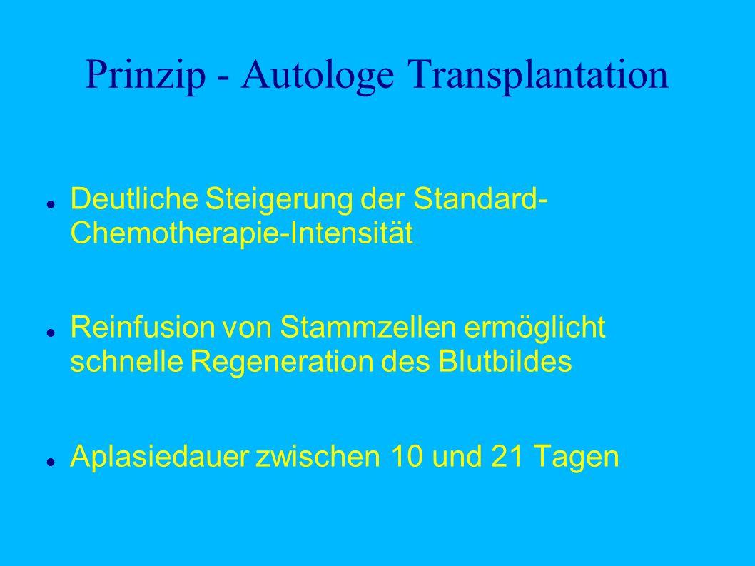Prinzip - Autologe Transplantation