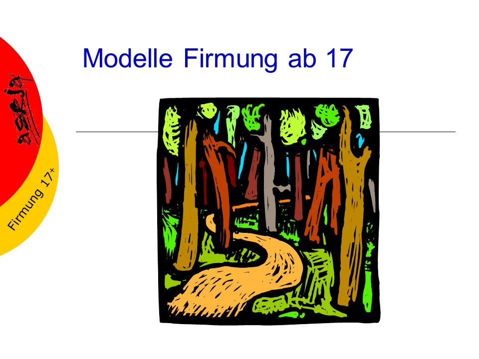 Modelle Firmung ab 17