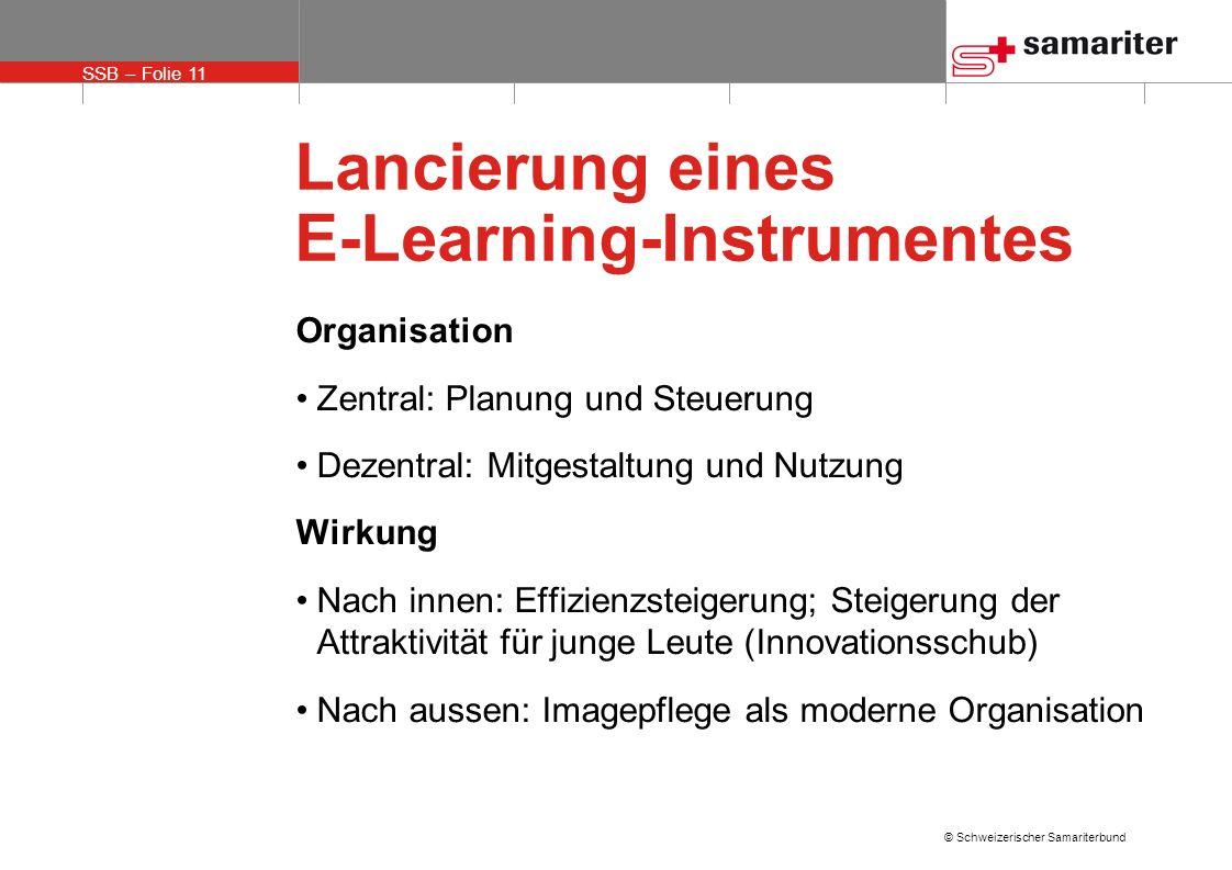 Lancierung eines E-Learning-Instrumentes