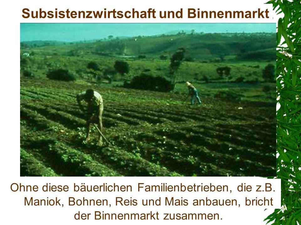 Subsistenzwirtschaft und Binnenmarkt