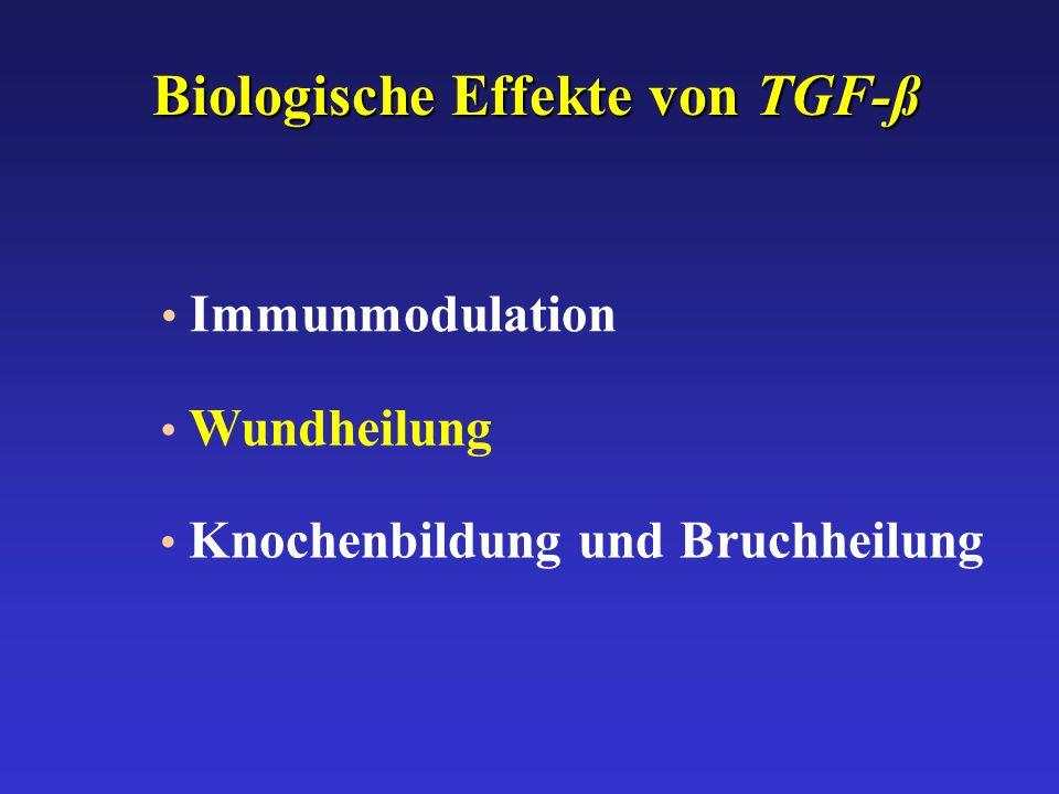 Biologische Effekte von TGF-ß
