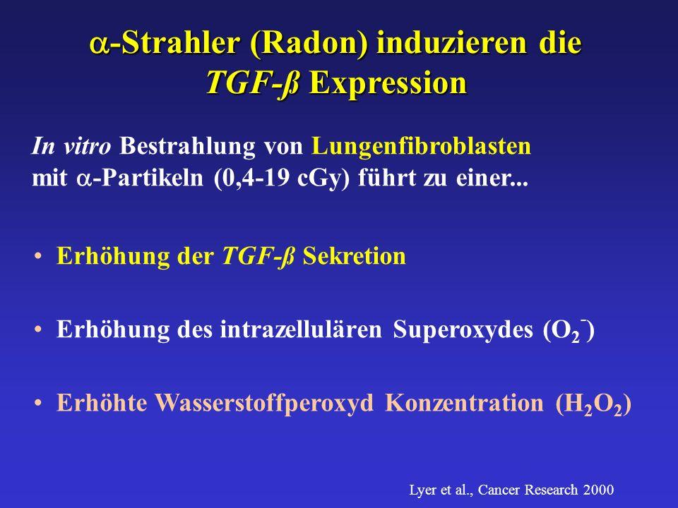 a-Strahler (Radon) induzieren die