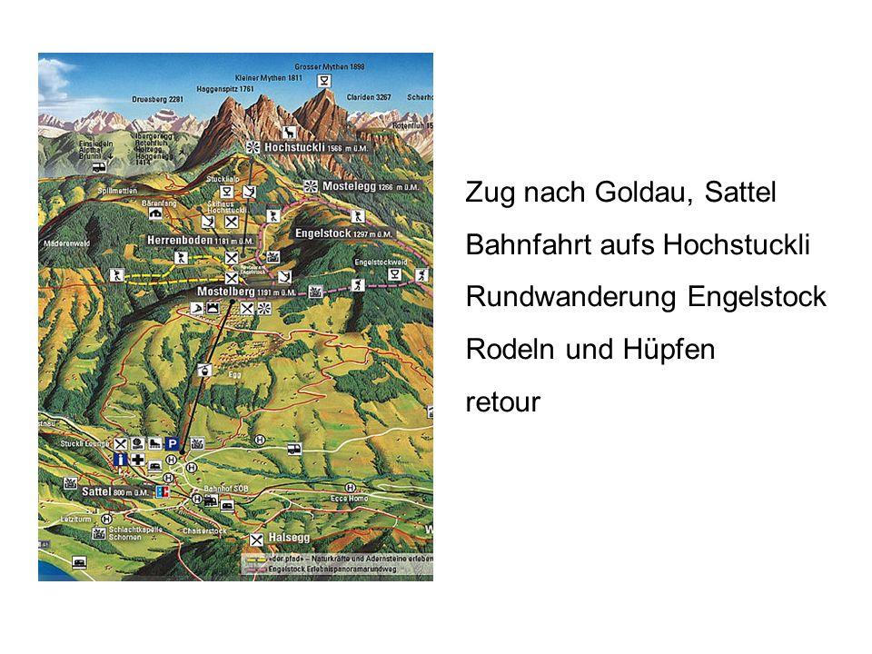 Zug nach Goldau, Sattel Bahnfahrt aufs Hochstuckli.
