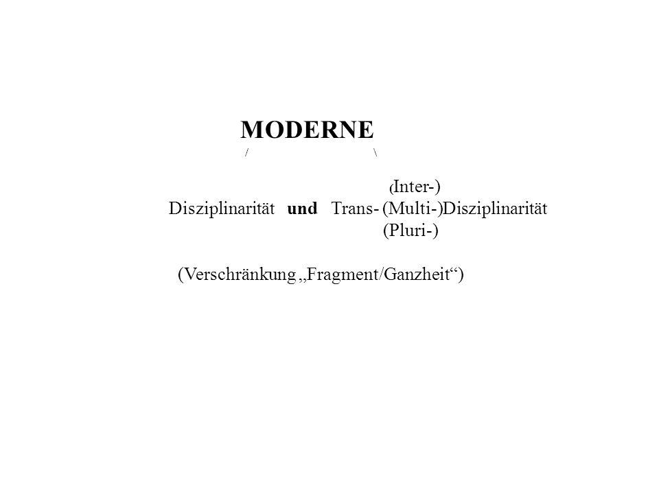 Disziplinarität und Trans- (Multi-)Disziplinarität