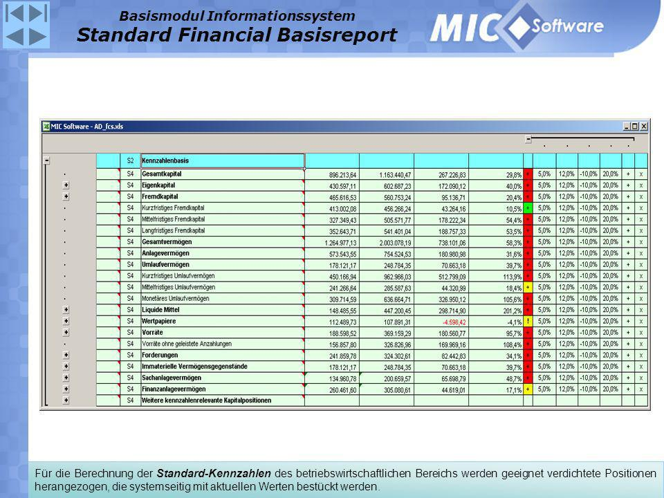 Basismodul Informationssystem Standard Financial Basisreport