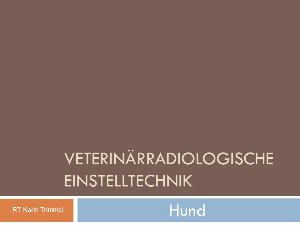 Veterinärradiologische Einstelltechnik