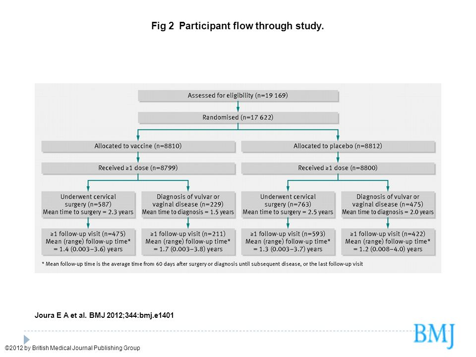 Fig 2 Participant flow through study.