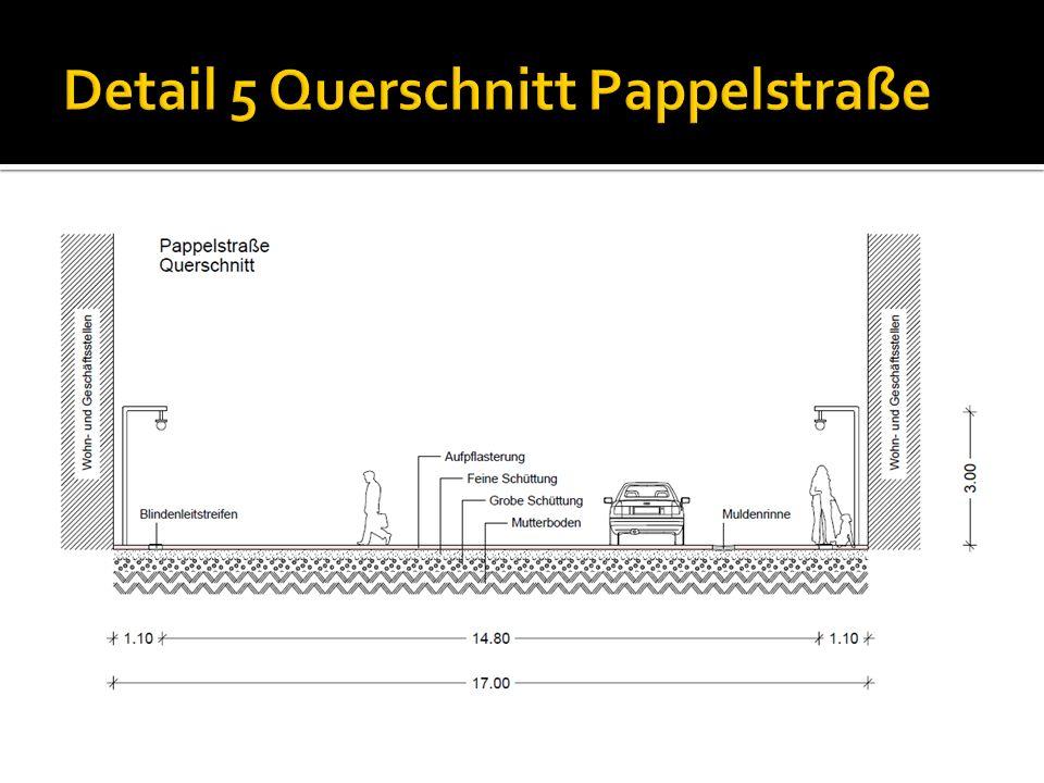 Detail 5 Querschnitt Pappelstraße