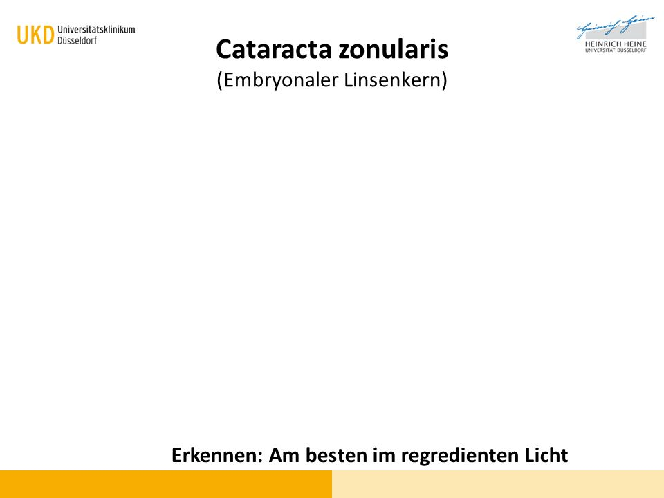 Cataracta zonularis (Embryonaler Linsenkern)