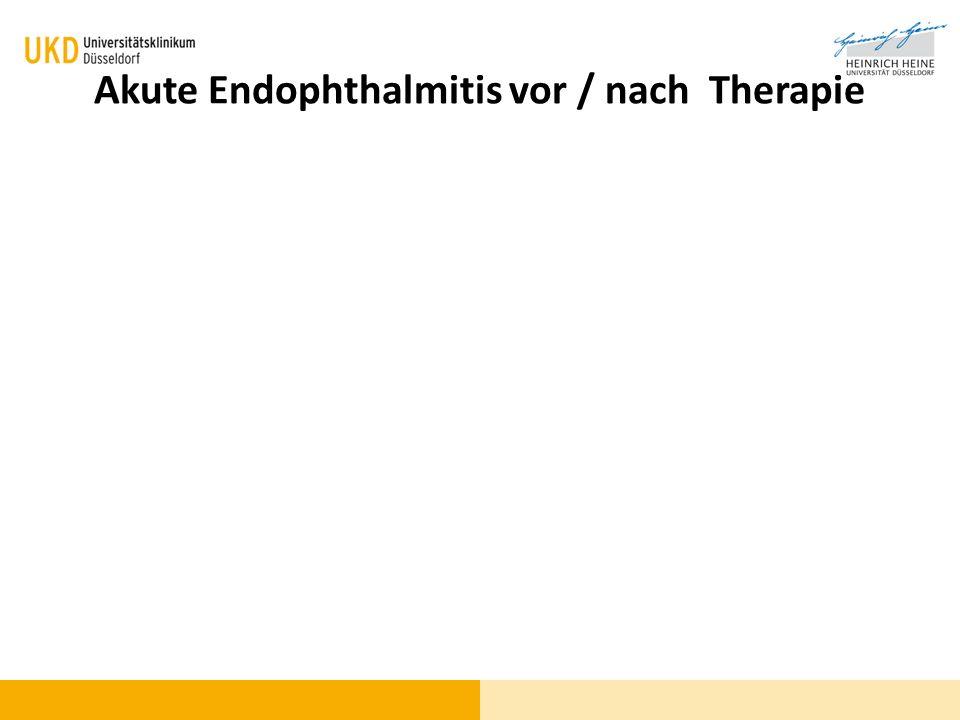 Akute Endophthalmitis vor / nach Therapie