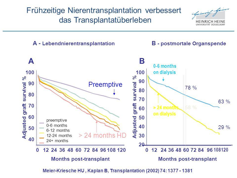 Frühzeitige Nierentransplantation verbessert das Transplantatüberleben